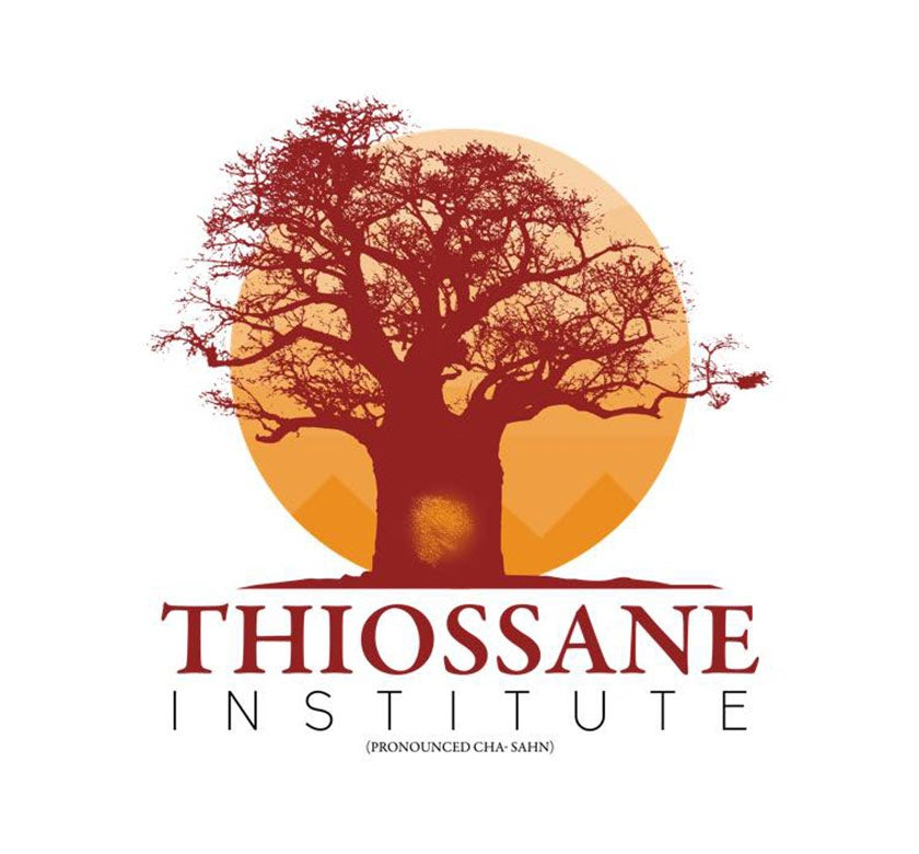 Thiossane-Institute.jpg